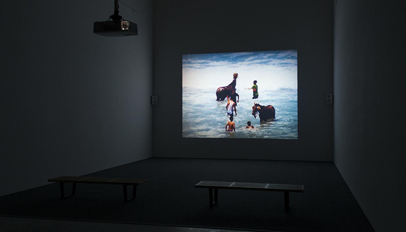 On This Island: Rosalind Nashashibi © 2016 UCI University Art Gallery. Photo: Jeff McLane