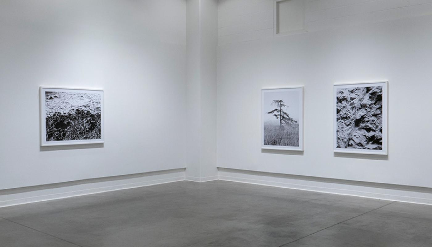 "Joaquin Palting, ""Origin[Redux],"" installation view, Room Gallery, UC Irvine © 2020. Photo: Paul Salveson"