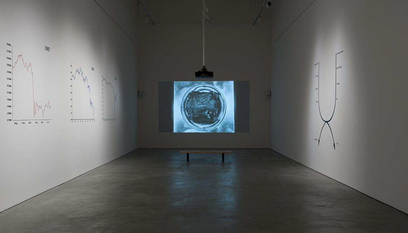 Libidinal Economies: Art in the Age of Bull Markets_installation view © 2015 UCI UAG