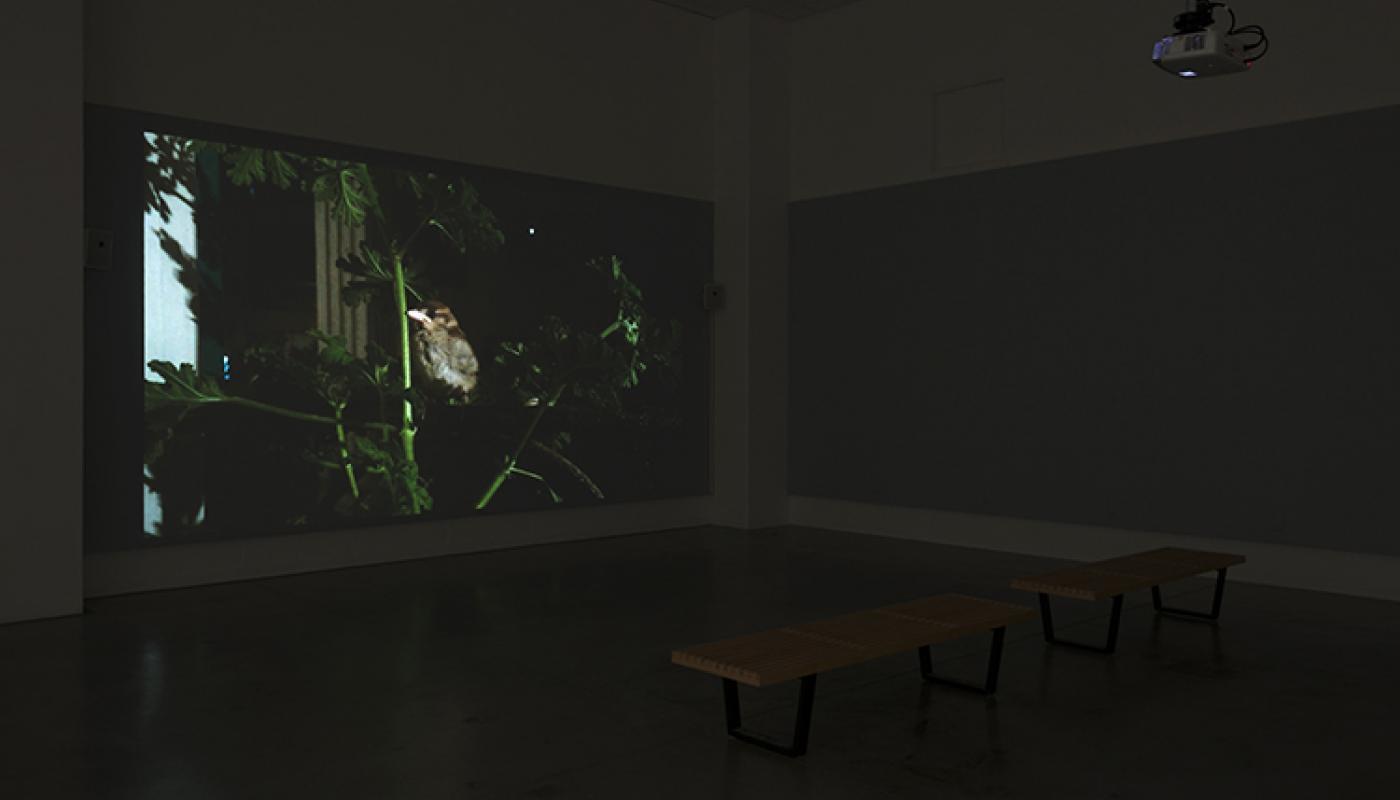 """Beirut Lab 1975(2020) installation view: Heather M. O'Brien, """"dyad gaze,"""" University Art Galleries, UC Irvine © 2019 Photo: Jeff McLane"""