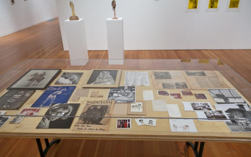The Radicalization of a 50's Housewife Installation View