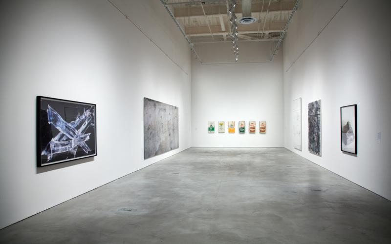 Symbolic Landscape: Pictures Beyond the Picturesque, installation view CAC