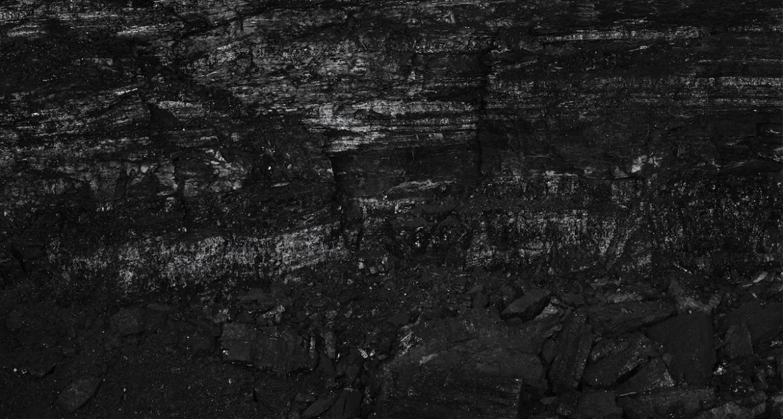 Miles Coolidge, Coal Seam, Bergwerk Prosper-Haniel 1 (detail), 2013. Pigment inkjet print, 57 x 50 i