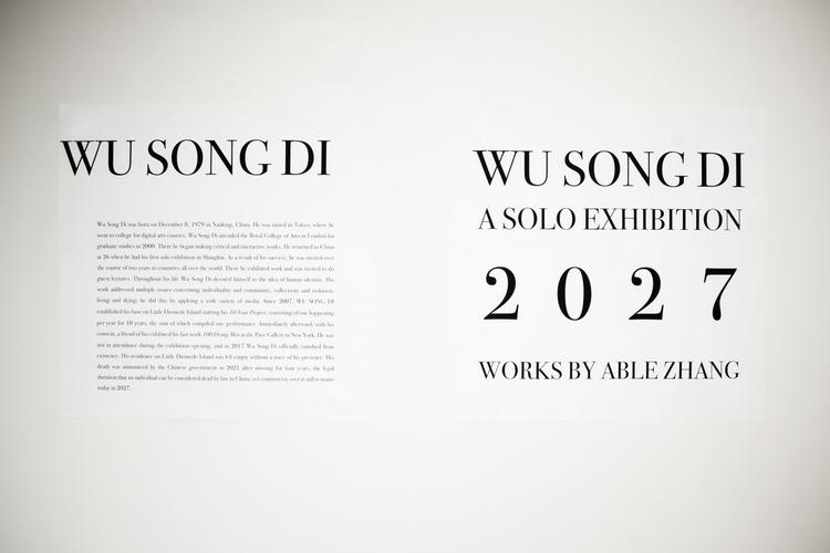 "Able Zhang ""WU SONG DI: A SOLO EXHIBITION, 2027"" 2017. Photo courtesy of the artist."